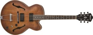 Best Guitars For Jazz And Blues
