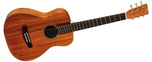 Top Acoustic Guitar Brands For Beginners